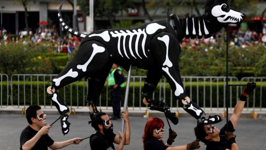 Los animales el dia de los Muertos