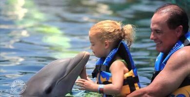 Nado con delfines en Cozumel