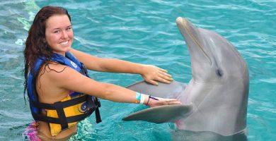 Nado con delfines isla mujeres