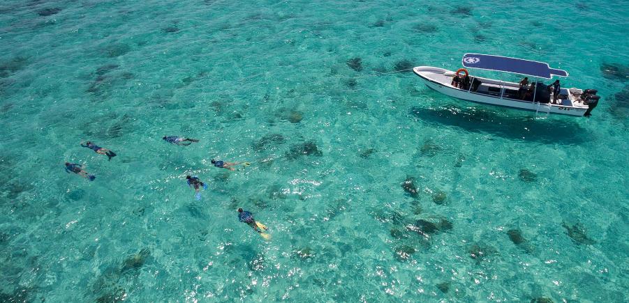 Esta barrera de arrecifes es la más grande de México y la segunda más grande del planeta