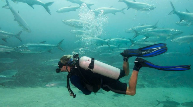 La práctica del buceo y snorkel en Xcalak también es muy común